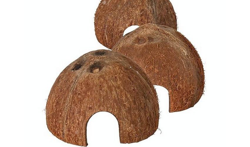 Домик из кокоса