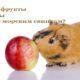Какие фрукты и ягоды можно морским свинкам