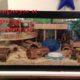 Террариум и аквариум для хомяков